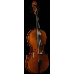 Viola Strunal 3/6 w
