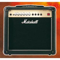 Marshall AVT20XT