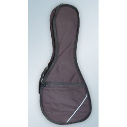 Pouzdro na mandolínu MA10F