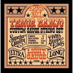 Ernie Ball Banjo 2306