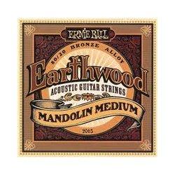 Ernie Ball 2065 mandolína